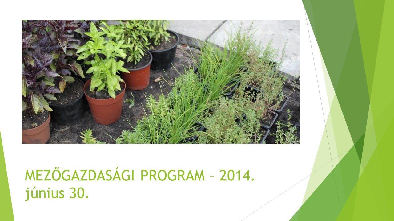 MEZŐGAZDASÁGI PROGRAM – 2014. június 30.