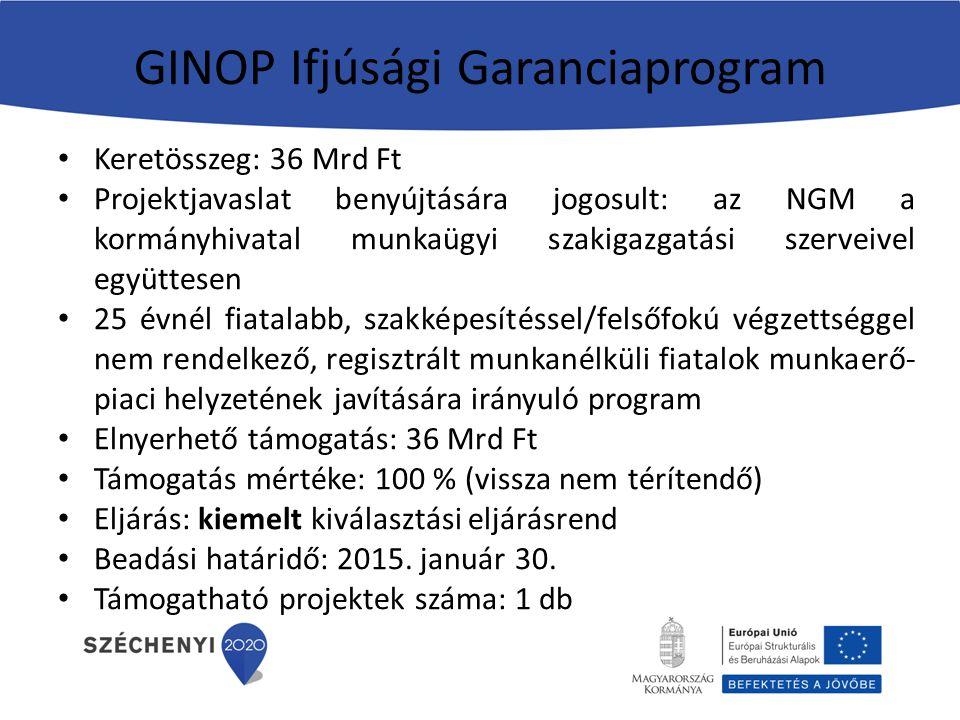 GINOP Ifjúsági Garanciaprogram Keretösszeg: 36 Mrd Ft Projektjavaslat benyújtására jogosult: az NGM a kormányhivatal munkaügyi szakigazgatási szerveivel együttesen 25 évnél fiatalabb, szakképesítéssel/felsőfokú végzettséggel nem rendelkező, regisztrált munkanélküli fiatalok munkaerő- piaci helyzetének javítására irányuló program Elnyerhető támogatás: 36 Mrd Ft Támogatás mértéke: 100 % (vissza nem térítendő) Eljárás: kiemelt kiválasztási eljárásrend Beadási határidő: 2015.