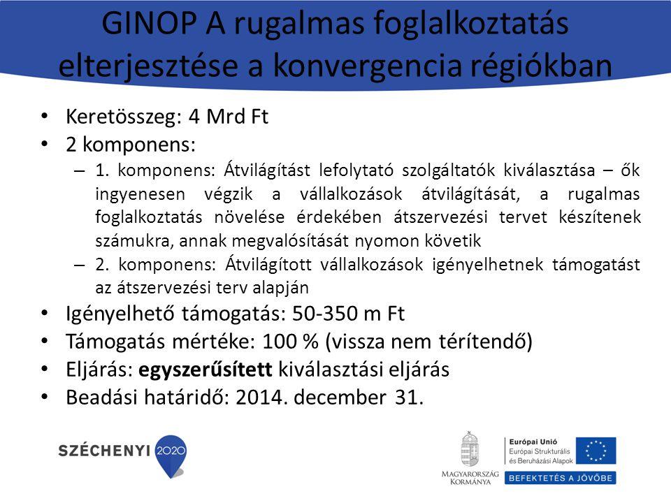 GINOP A rugalmas foglalkoztatás elterjesztése a konvergencia régiókban Keretösszeg: 4 Mrd Ft 2 komponens: – 1. komponens: Átvilágítást lefolytató szol