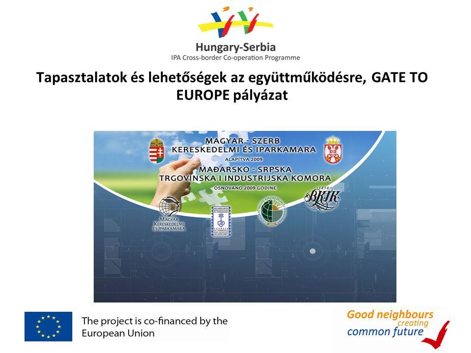 Tapasztalatok és lehetőségek az együttműködésre, GATE TO EUROPE pályázat