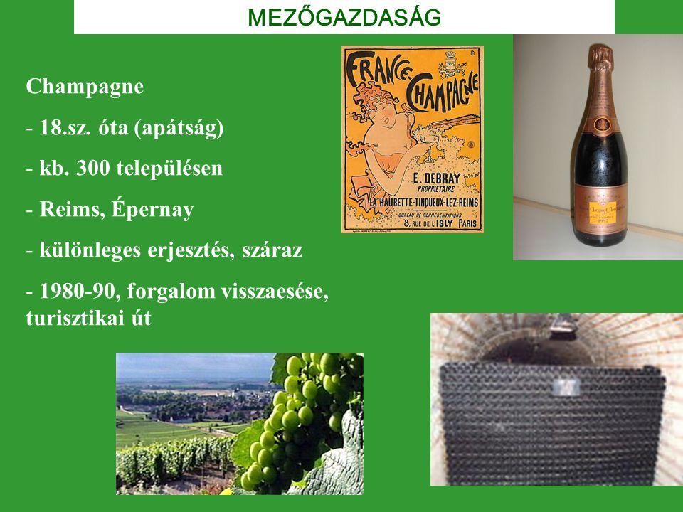 MEZŐGAZDASÁG Champagne - 18.sz. óta (apátság) - kb. 300 településen - Reims, Épernay - különleges erjesztés, száraz - 1980-90, forgalom visszaesése, t