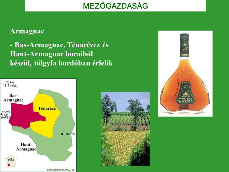 Armagnac - Bas-Armagnac, Ténarézez és Haut-Armagnac boraiból készül, tölgyfa hordóban érlelik MEZŐGAZDASÁG