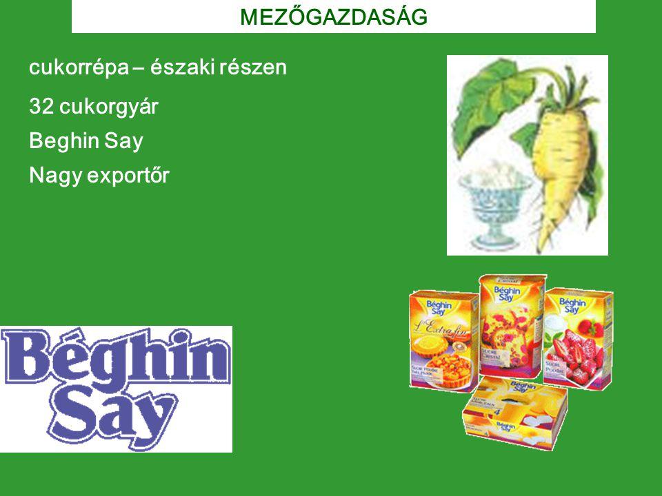 cukorrépa – északi részen 32 cukorgyár Beghin Say Nagy exportőr MEZŐGAZDASÁG