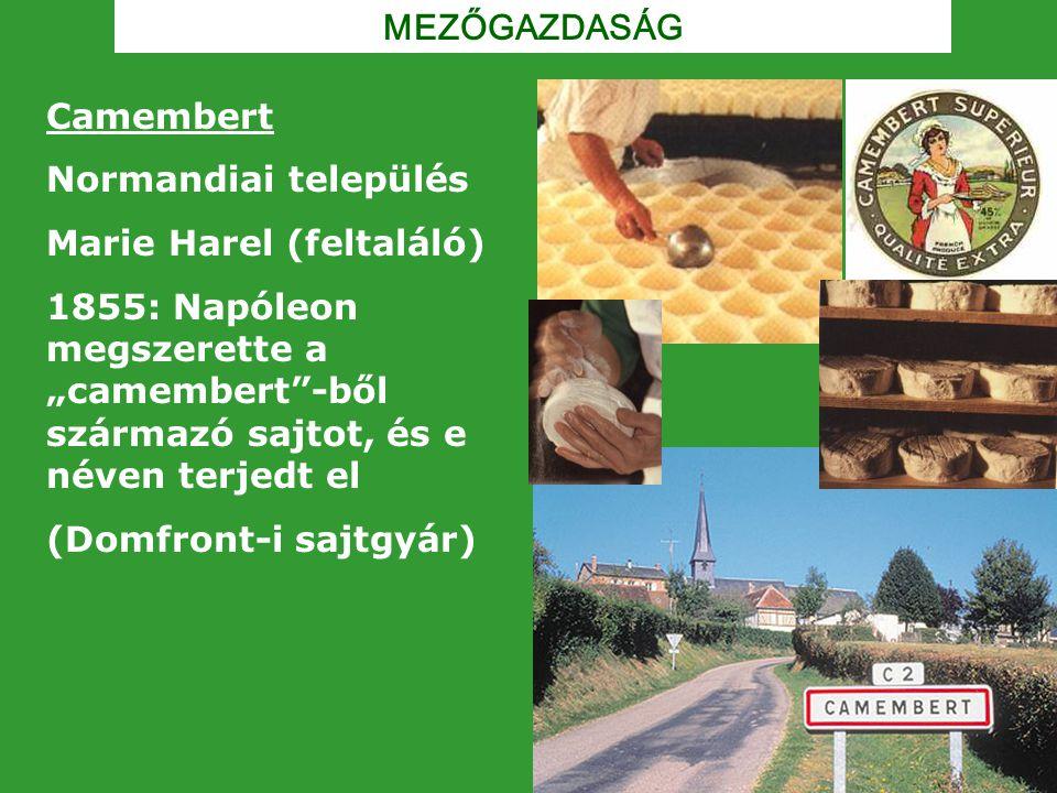 """MEZŐGAZDASÁG Camembert Normandiai település Marie Harel (feltaláló) 1855: Napóleon megszerette a """"camembert""""-ből származó sajtot, és e néven terjedt e"""