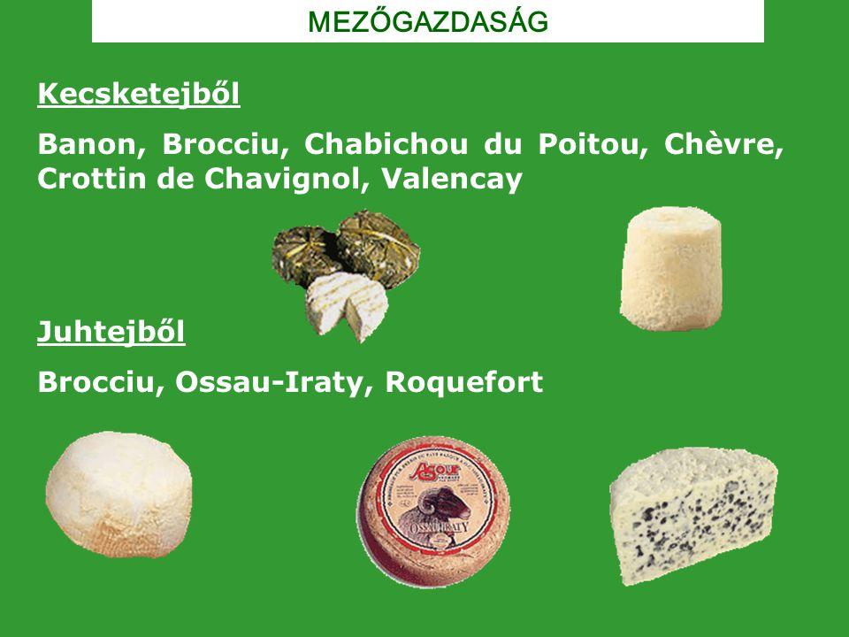 MEZŐGAZDASÁG Kecsketejből Banon, Brocciu, Chabichou du Poitou, Chèvre, Crottin de Chavignol, Valencay Juhtejből Brocciu, Ossau-Iraty, Roquefort