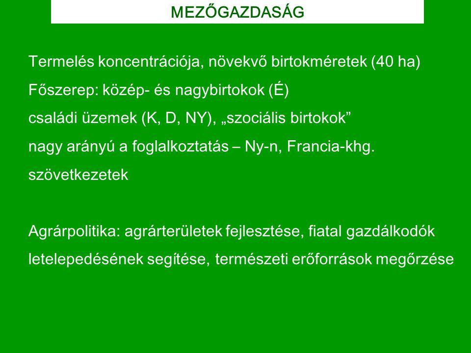 """MEZŐGAZDASÁG Termelés koncentrációja, növekvő birtokméretek (40 ha) Főszerep: közép- és nagybirtokok (É) családi üzemek (K, D, NY), """"szociális birtoko"""