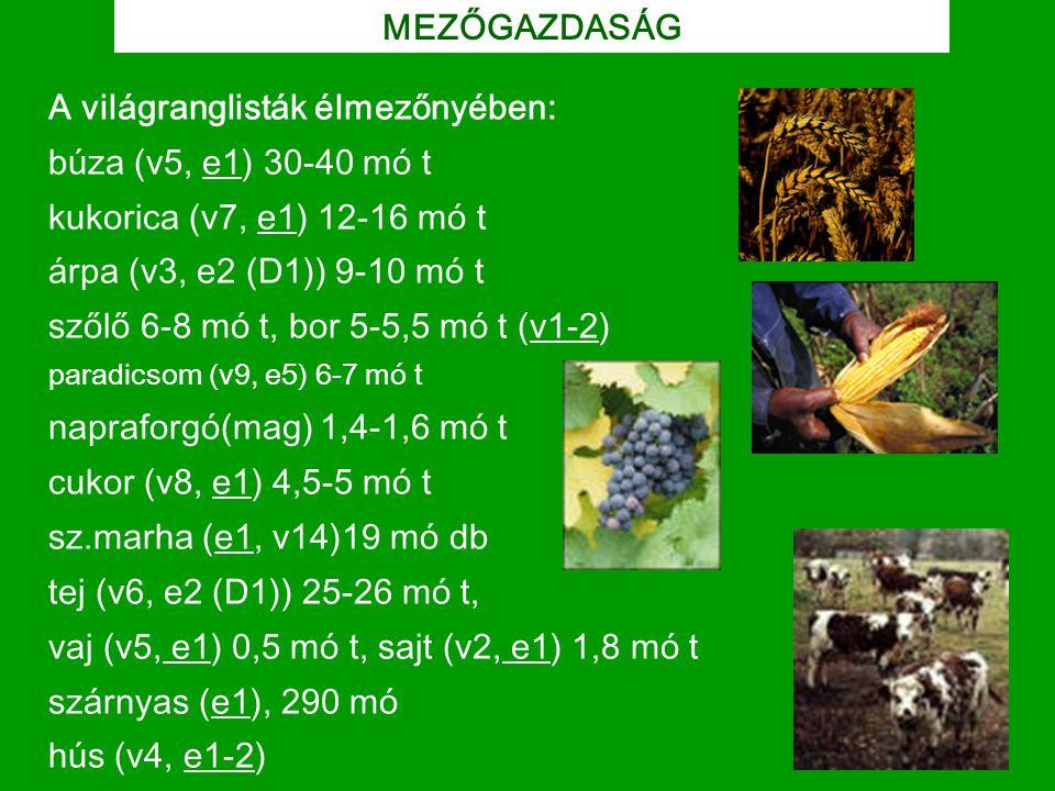 MEZŐGAZDASÁG A világranglisták élmezőnyében: búza (v5, e1) 30-40 mó t kukorica (v7, e1) 12-16 mó t árpa (v3, e2 (D1)) 9-10 mó t szőlő 6-8 mó t, bor 5-