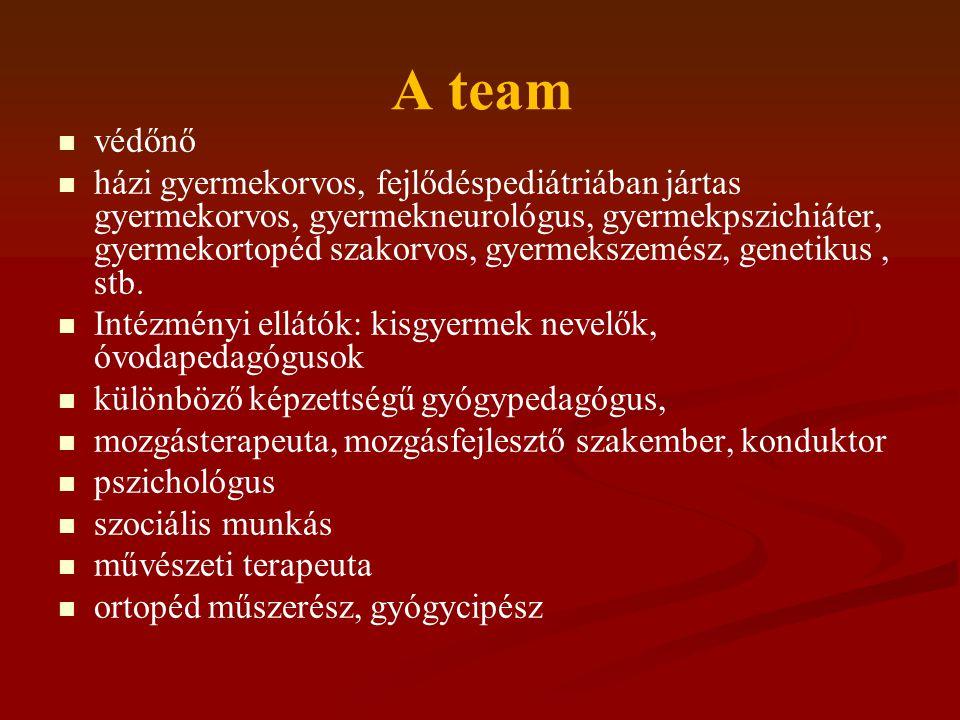 A team védőnő házi gyermekorvos, fejlődéspediátriában jártas gyermekorvos, gyermekneurológus, gyermekpszichiáter, gyermekortopéd szakorvos, gyermeksze