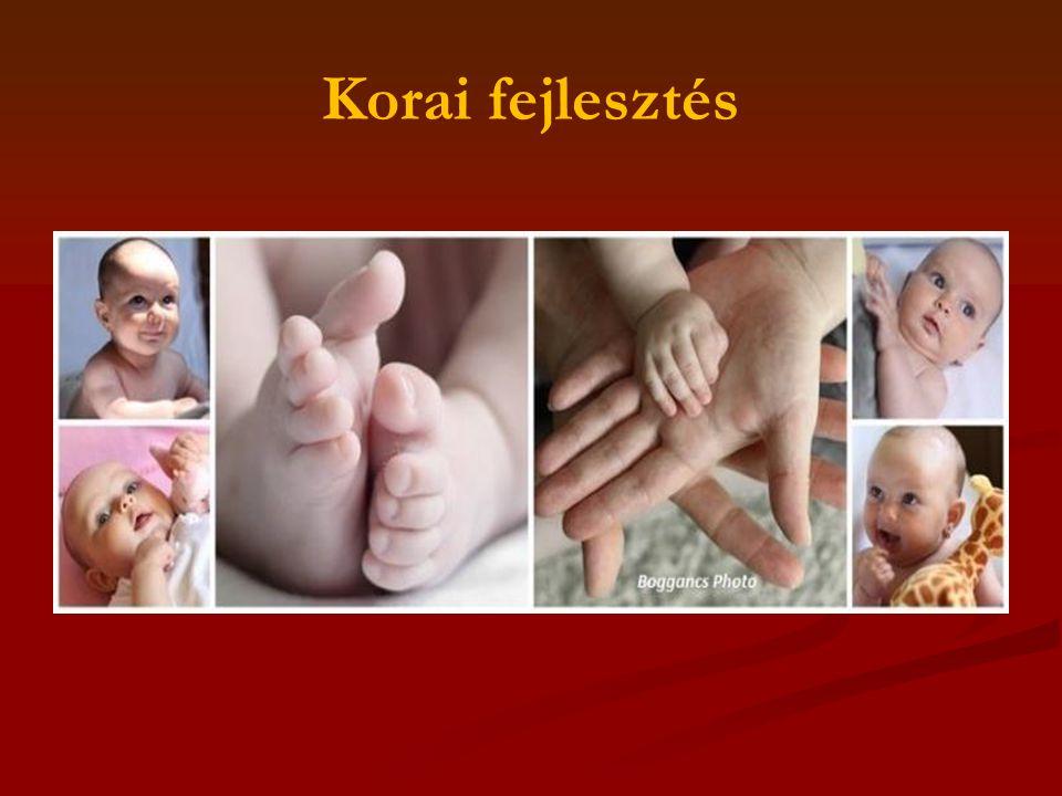 A korai segítségnyújtás fogalma A korai fejlesztés, gondozás 0-5 (6) éves korú SNI vagy eltérő fejlődési menetű gyermekek komplex ellátását jelenti magában foglalja: Szűrés-tanácsadást Fejlesztést, Terápiás ellátást Szakmaközi kapcsolatokat Mozgás fejlesztés Kognitív fejlesztés Érzékszervi fejlesztés Szociabilitás fejlesztése Kommunikáció fejlesztése A terápiás munka része: A szülőkkel történö folyamatos konzultáció És a családok mentálhigiénés megsegítése