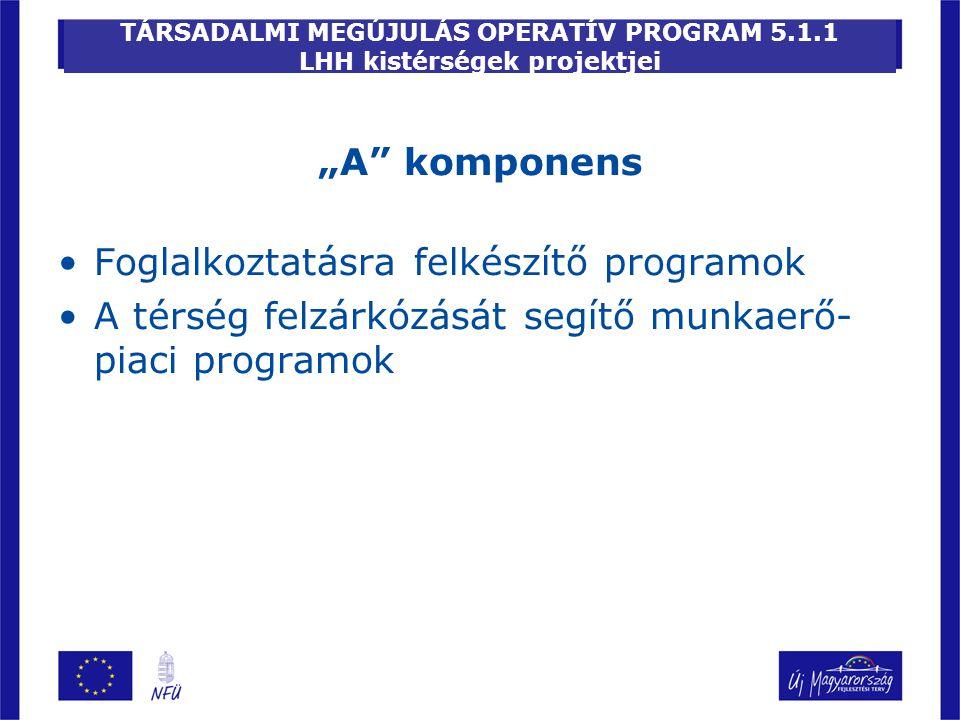 """TÁRSADALMI MEGÚJULÁS OPERATÍV PROGRAM 5.1.1 LHH kistérségek projektjei """"A"""" komponens Foglalkoztatásra felkészítő programok A térség felzárkózását segí"""