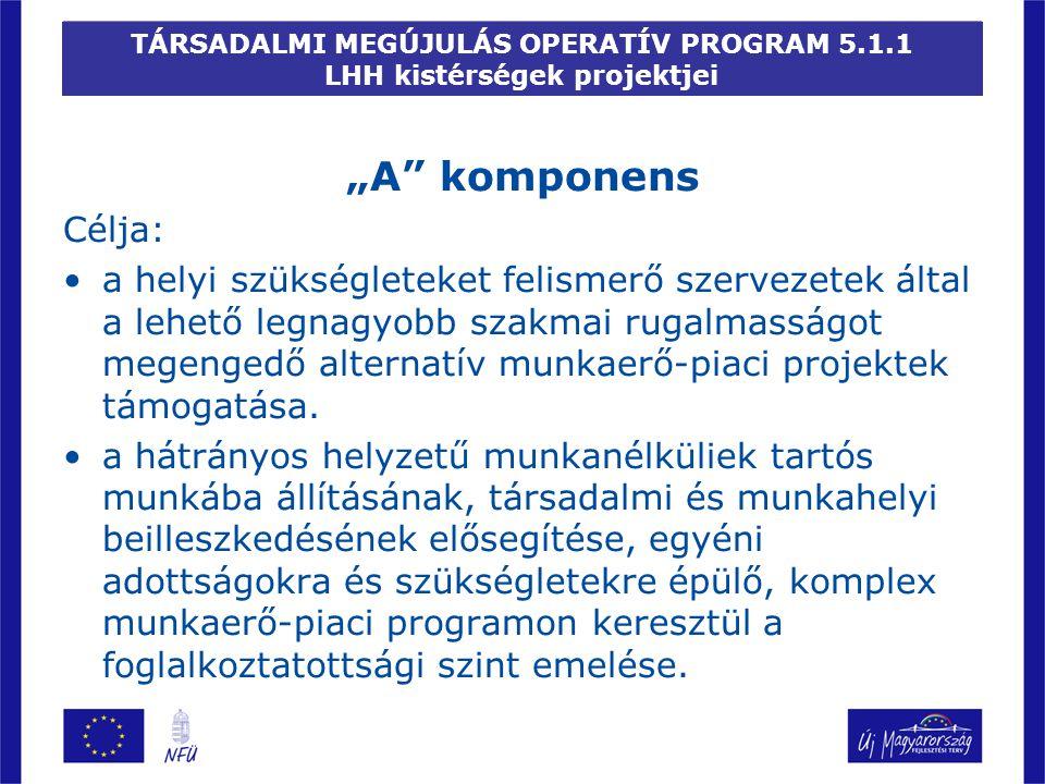 """TÁRSADALMI MEGÚJULÁS OPERATÍV PROGRAM 5.1.1 LHH kistérségek projektjei """"A"""" komponens Célja: a helyi szükségleteket felismerő szervezetek által a lehet"""