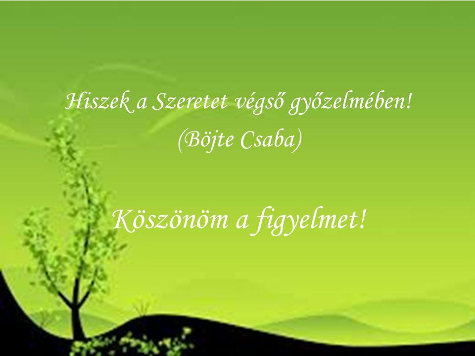 Hiszek a Szeretet végső győzelmében! (Böjte Csaba) Köszönöm a figyelmet!