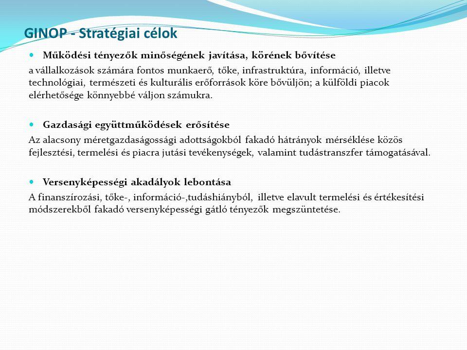 GINOP - Stratégiai célok Működési tényezők minőségének javítása, körének bővítése a vállalkozások számára fontos munkaerő, tőke, infrastruktúra, információ, illetve technológiai, természeti és kulturális erőforrások köre bővüljön; a külföldi piacok elérhetősége könnyebbé váljon számukra.