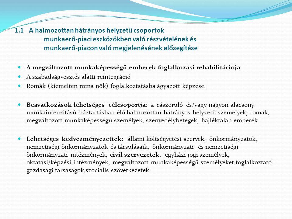 1.1 A halmozottan hátrányos helyzetű csoportok munkaerő-piaci eszközökben való részvételének és munkaerő-piacon való megjelenésének elősegítése A megváltozott munkaképességű emberek foglalkozási rehabilitációja A szabadságvesztés alatti reintegráció Romák (kiemelten roma nők) foglalkoztatásba ágyazott képzése.
