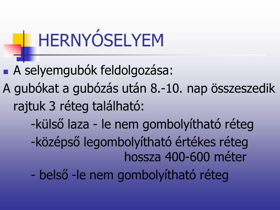 HERNYÓSELYEM A selyemgubók feldolgozása: A gubókat a gubózás után 8.-10. nap összeszedik rajtuk 3 réteg található: -külső laza - le nem gombolyítható