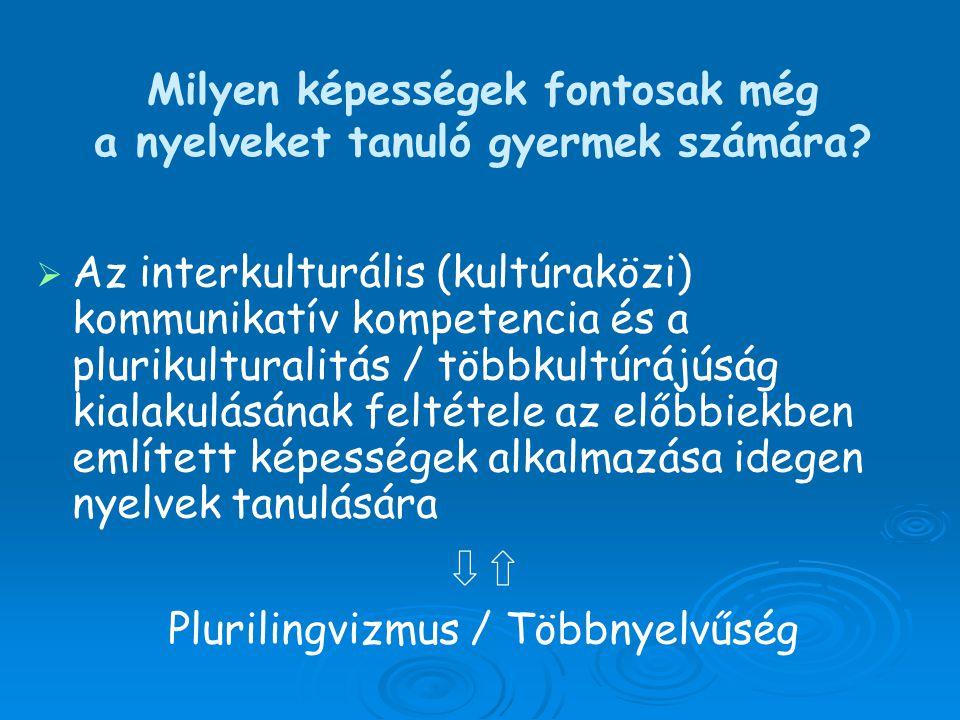 Milyen képességek fontosak még a nyelveket tanuló gyermek számára?   Az interkulturális (kultúraközi) kommunikatív kompetencia és a plurikulturalitá