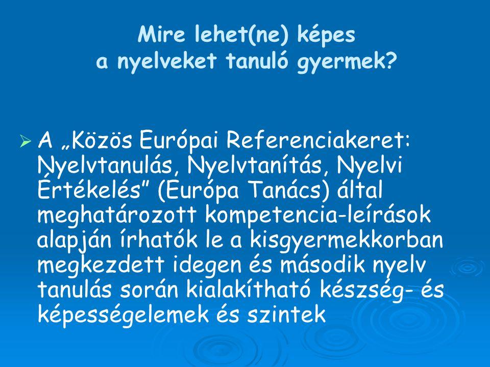 """  A """"Közös Európai Referenciakeret: Nyelvtanulás, Nyelvtanítás, Nyelvi Értékelés"""" (Európa Tanács) által meghatározott kompetencia-leírások alapján í"""