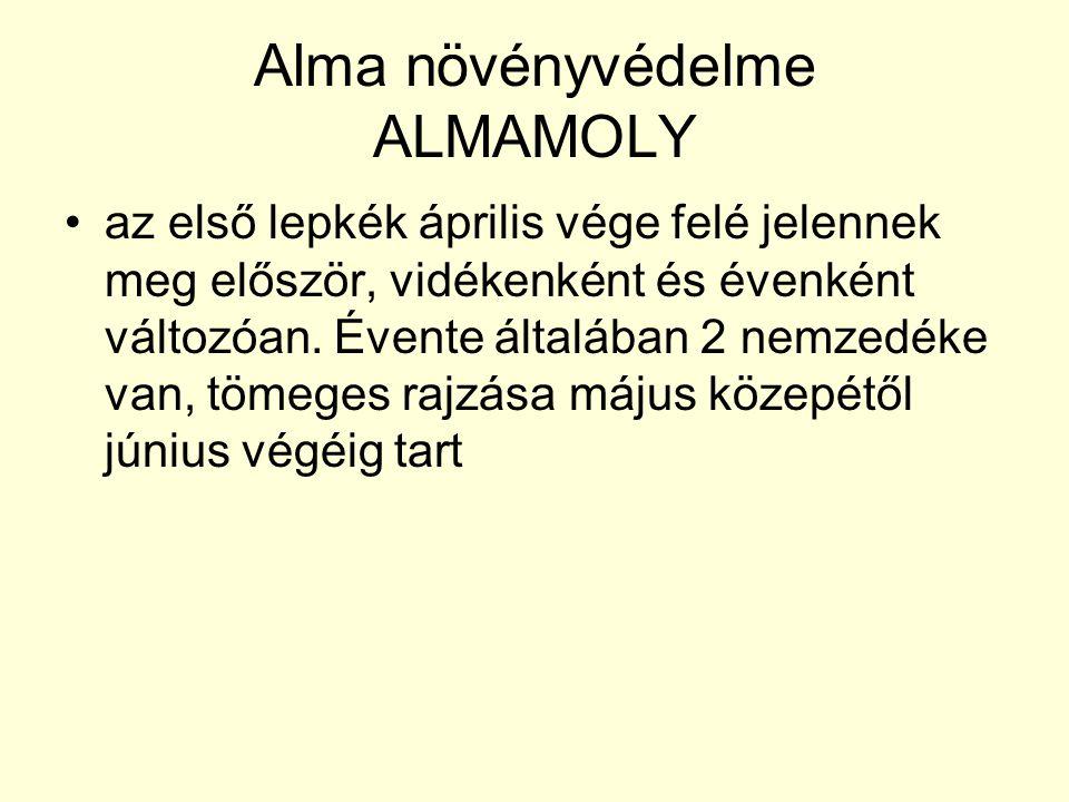 Alma növényvédelme ALMAMOLY az első lepkék április vége felé jelennek meg először, vidékenként és évenként változóan.