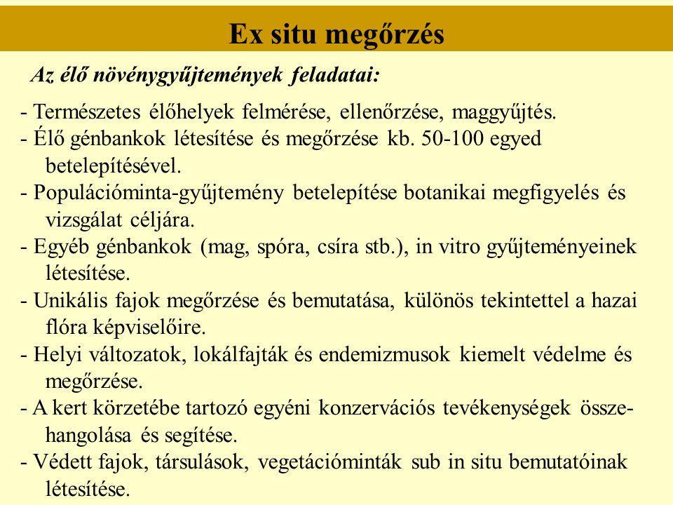 Ex situ megőrzés - Természetes élőhelyek felmérése, ellenőrzése, maggyűjtés. - Élő génbankok létesítése és megőrzése kb. 50-100 egyed betelepítésével.