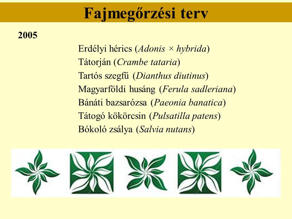Fajmegőrzési terv 2005 Erdélyi hérics (Adonis × hybrida) Tátorján (Crambe tataria) Tartós szegfű (Dianthus diutinus) Magyarföldi husáng (Ferula sadler