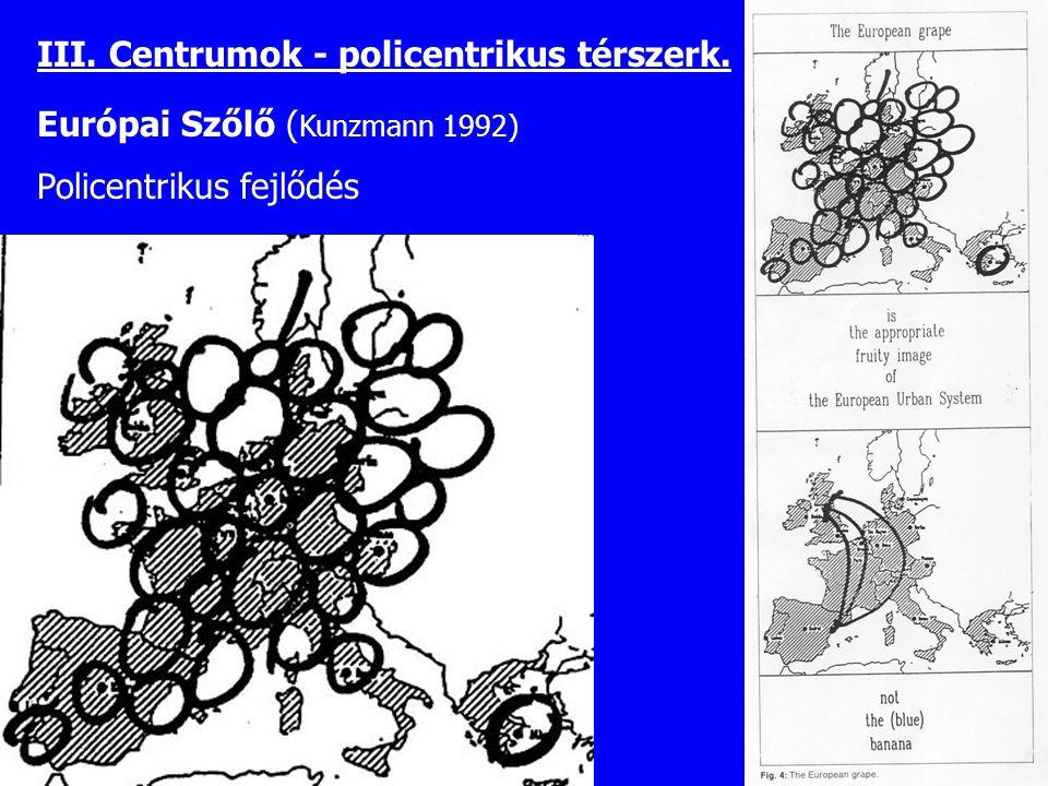 Európai Szőlő ( Kunzmann 1992) Policentrikus fejlődés III. Centrumok - policentrikus térszerk.
