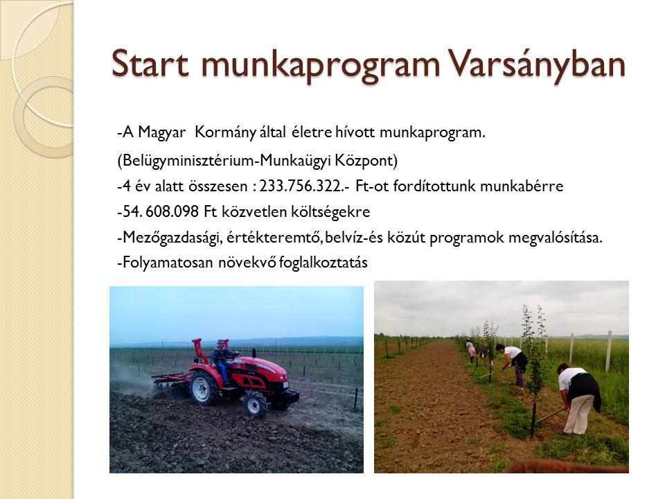 Mezőgazdasági program, Falugazdaság 24,8 ha földterület az önkormányzat tulajdonában - 5000 m2 málna, 5ha gyümölcsös, almáskert, zöldségeskertek, fóliasátor, gombatermesztés Cél: egészséges élelmiszerek előállítása, helyben (közétkeztetésben) történő felhasználás -Szociális Szövetkezet létrehozása.