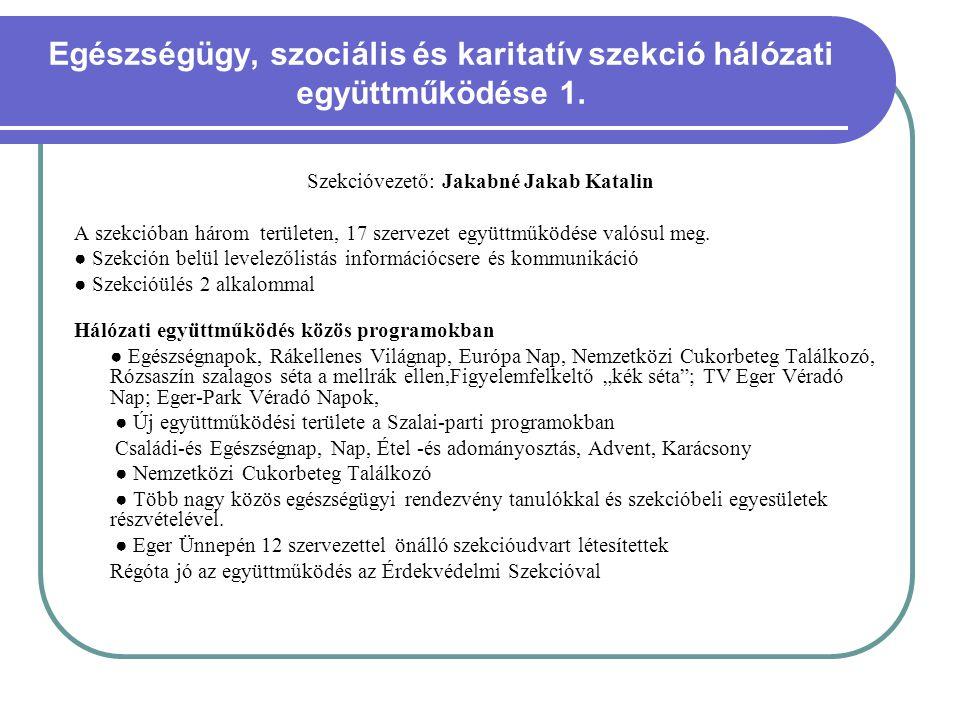 Egészségügy, szociális és karitatív szekció hálózati együttműködése 1. Szekcióvezető: Jakabné Jakab Katalin A szekcióban három területen, 17 szervezet