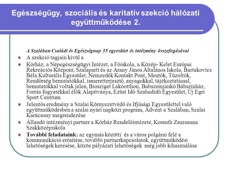 Egészségügy, szociális és karitatív szekció hálózati együttműködése 2.