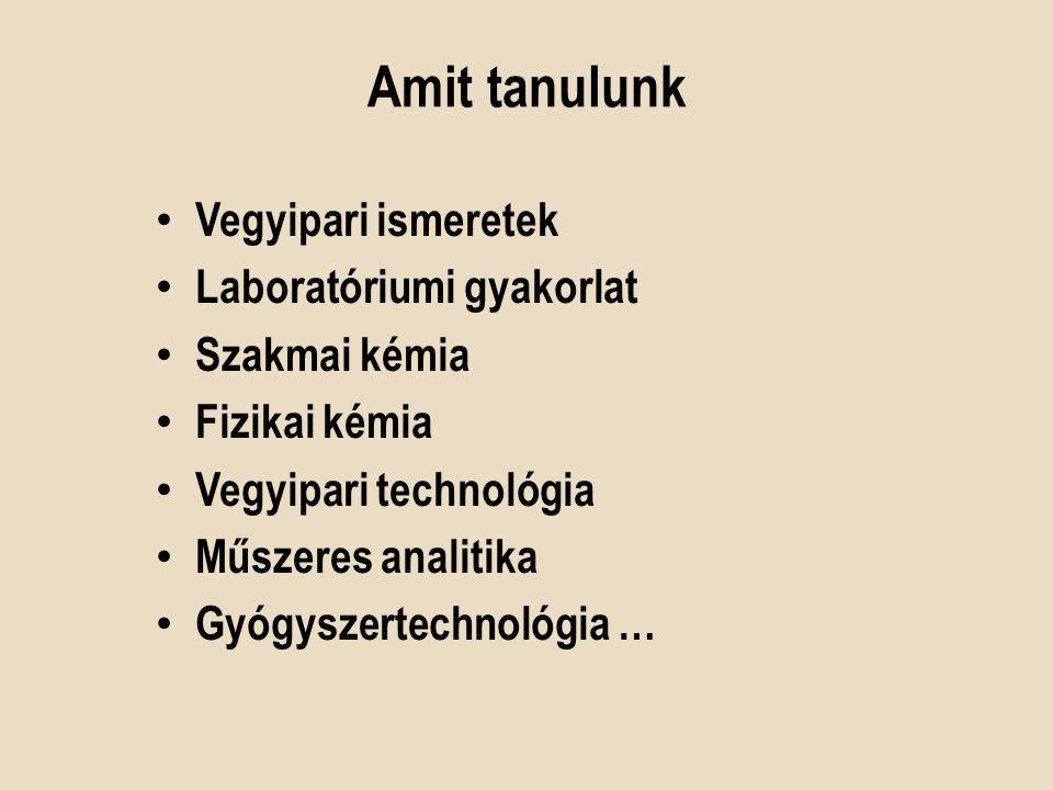 Elektronikus tananyag