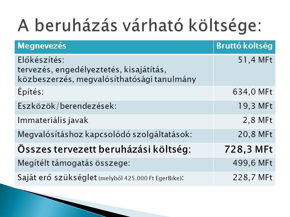 MegnevezésIdőpont Beruházás előkészítése/tervek 2012.