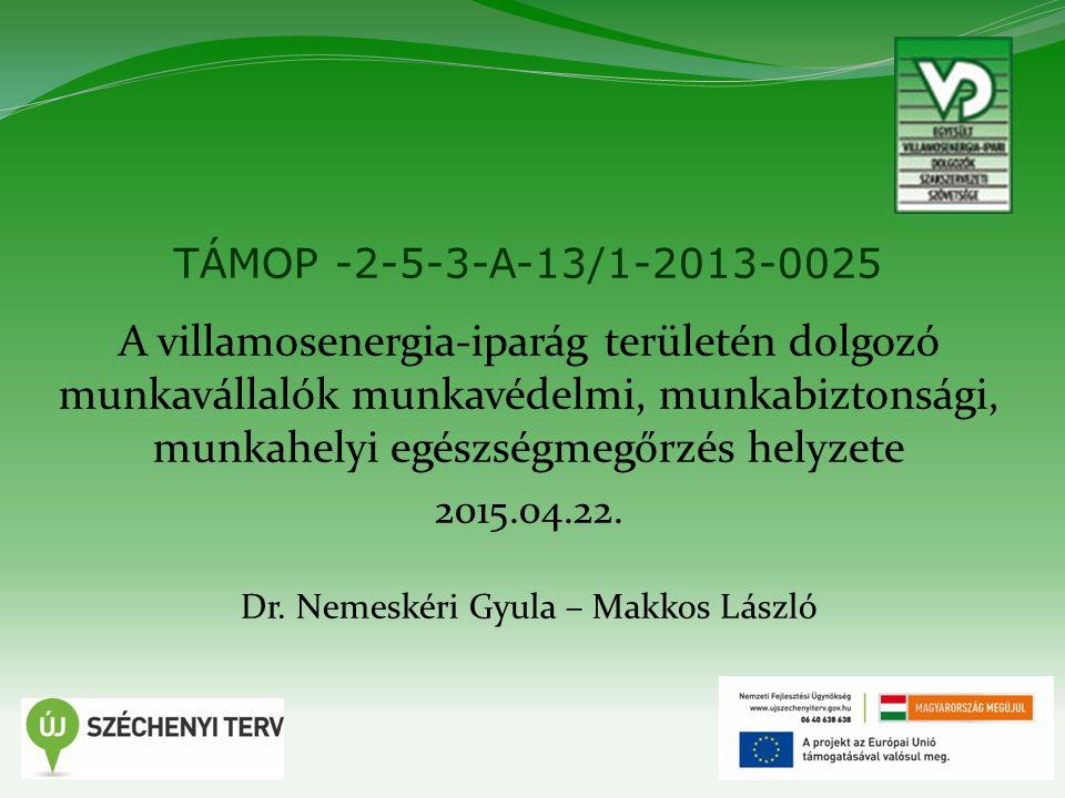 1 TÁMOP -2-5-3-A-13/1-2013-0025 A villamosenergia-iparág területén dolgozó munkavállalók munkavédelmi, munkabiztonsági, munkahelyi egészségmegőrzés helyzete 2015.04.22.