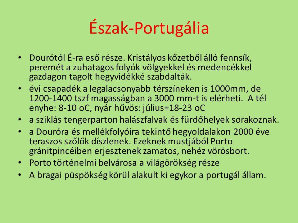 Észak-Portugália Dourótól É-ra eső része.