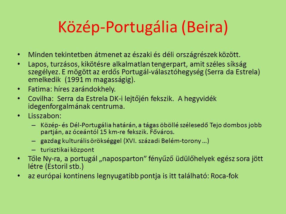 Közép-Portugália (Beira) Minden tekintetben átmenet az északi és déli országrészek között. Lapos, turzásos, kikötésre alkalmatlan tengerpart, amit sz