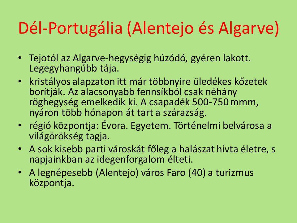 Dél-Portugália (Alentejo és Algarve) Tejotól az Algarve-hegységig húzódó, gyéren lakott. Legegyhangúbb tája. kristályos alapzaton itt már többnyire ü