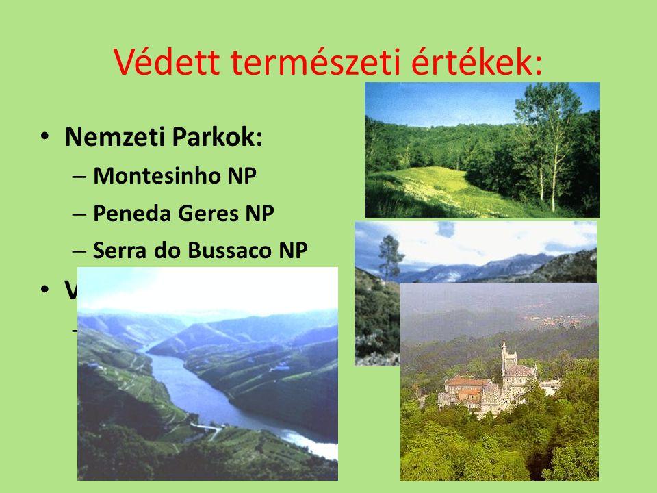 Védett természeti értékek: Nemzeti Parkok: – Montesinho NP – Peneda Geres NP – Serra do Bussaco NP Világörökség: – Felső-Douro