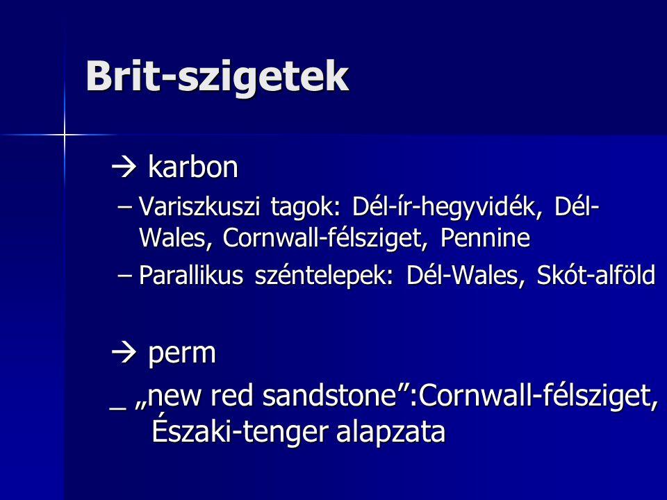 """Brit-szigetek  karbon –Variszkuszi tagok: Dél-ír-hegyvidék, Dél- Wales, Cornwall-félsziget, Pennine –Parallikus széntelepek: Dél-Wales, Skót-alföld  perm _ """"new red sandstone :Cornwall-félsziget, Északi-tenger alapzata"""