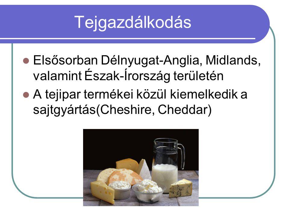 Tejgazdálkodás Elsősorban Délnyugat-Anglia, Midlands, valamint Észak-Írország területén A tejipar termékei közül kiemelkedik a sajtgyártás(Cheshire, C