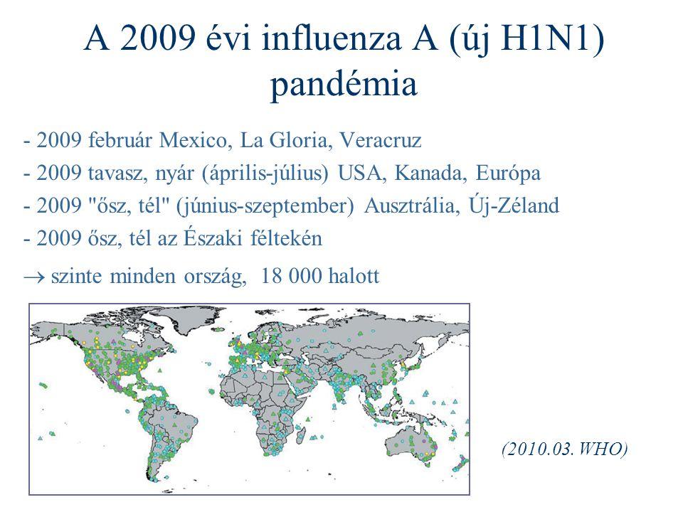 A 2009 évi influenza A (új H1N1) pandémia - 2009 február Mexico, La Gloria, Veracruz - 2009 tavasz, nyár (április-július) USA, Kanada, Európa - 2009 ősz, tél (június-szeptember) Ausztrália, Új-Zéland - 2009 ősz, tél az Északi féltekén  szinte minden ország, 18 000 halott (2010.03.