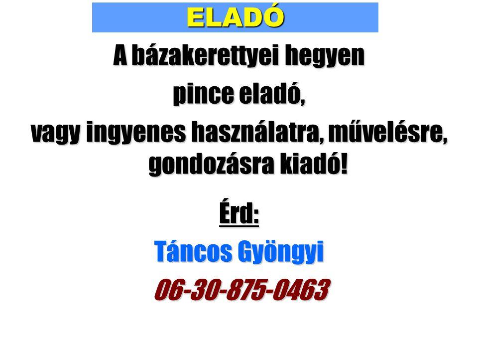 ELADÓ A bázakerettyei hegyen pince eladó, vagy ingyenes használatra, művelésre, gondozásra kiadó! Érd: Táncos Gyöngyi 06-30-875-0463
