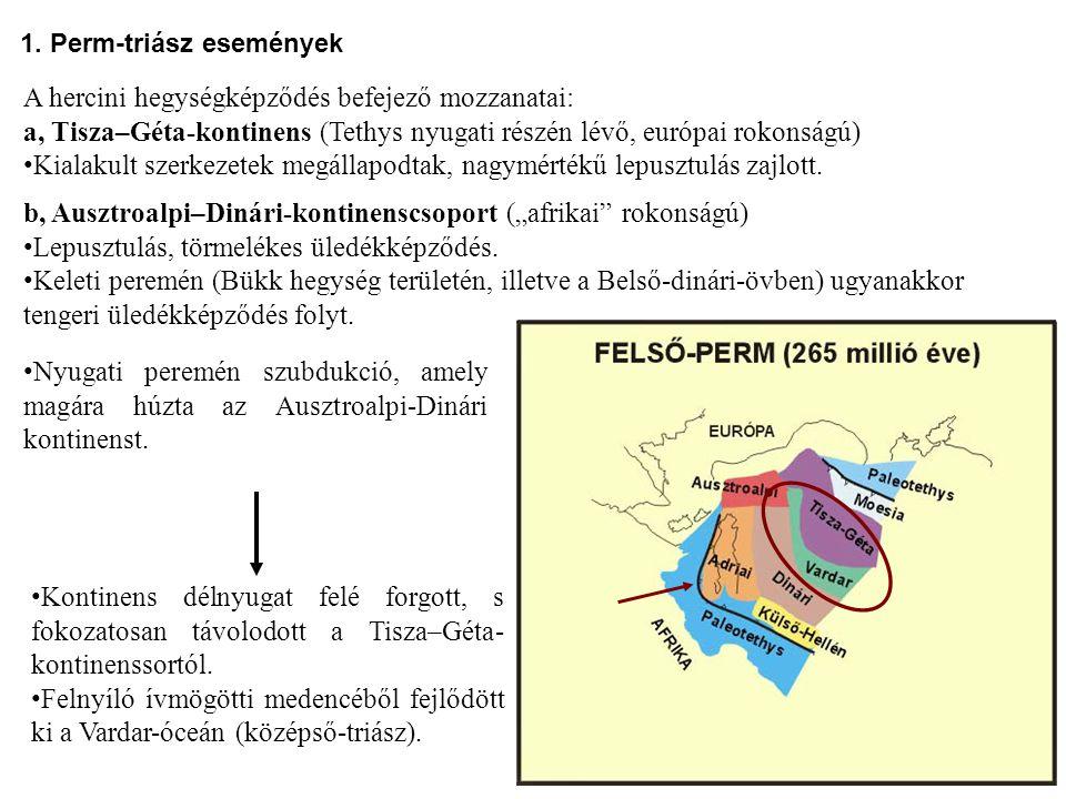 A hercini hegységképződés befejező mozzanatai: a, Tisza–Géta-kontinens (Tethys nyugati részén lévő, európai rokonságú) Kialakult szerkezetek megállapo