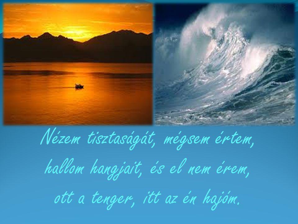 Nézem tisztaságát, mégsem értem, hallom hangjait, és el nem érem, ott a tenger, itt az én hajóm.