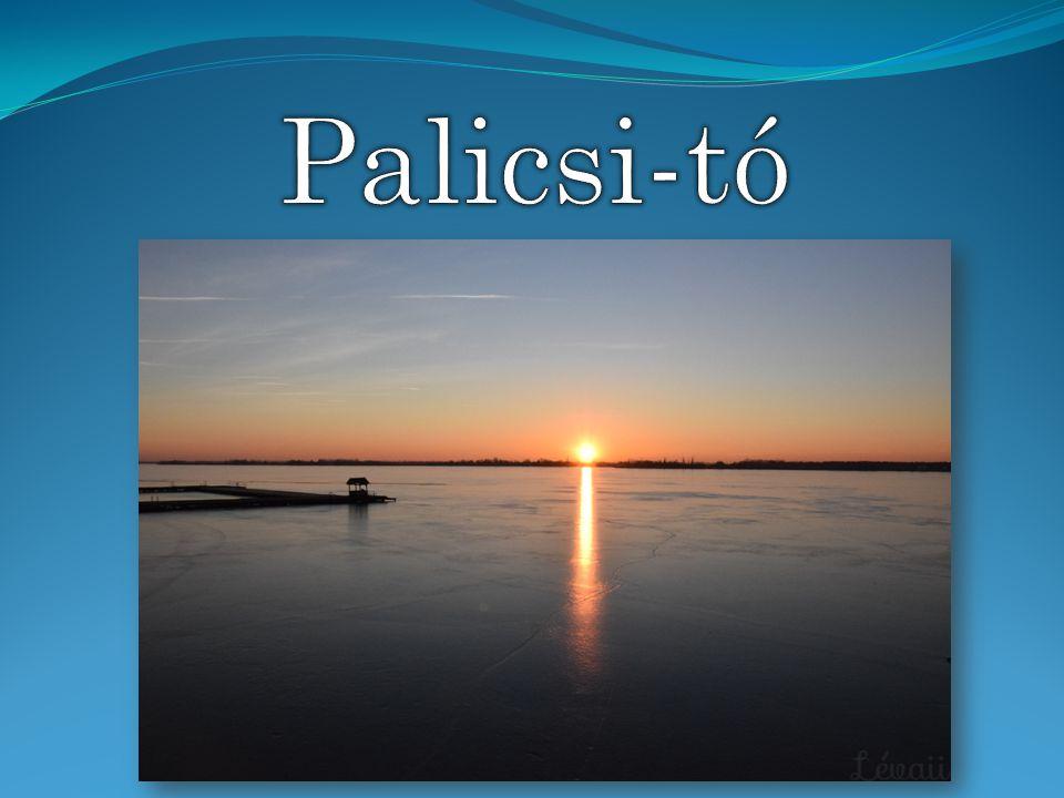 A Palicsi-tó egy természetes tó Szerbiában, a Vajdaságban, Szabadkától 8 km-re keletre, Palics üdülőváros része.
