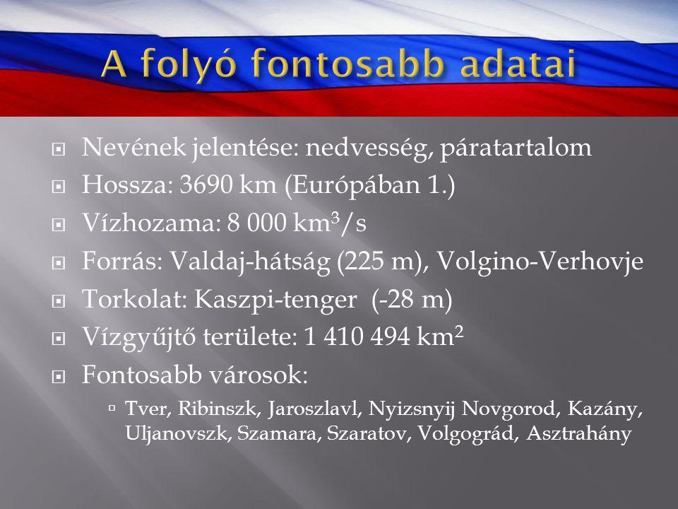  Nevének jelentése: nedvesség, páratartalom  Hossza: 3690 km (Európában 1.)  Vízhozama: 8 000 km 3 /s  Forrás: Valdaj-hátság (225 m), Volgino-Verh