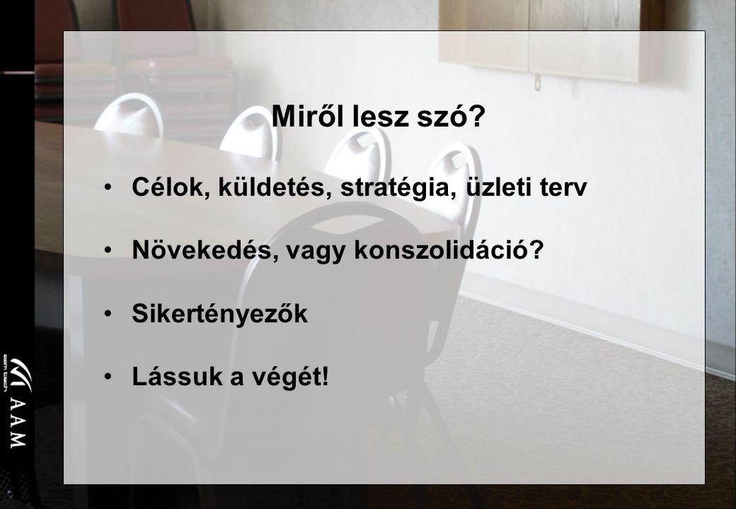 AAM Vezetői Informatikai Tanácsadó zRt. 2 Miről lesz szó.