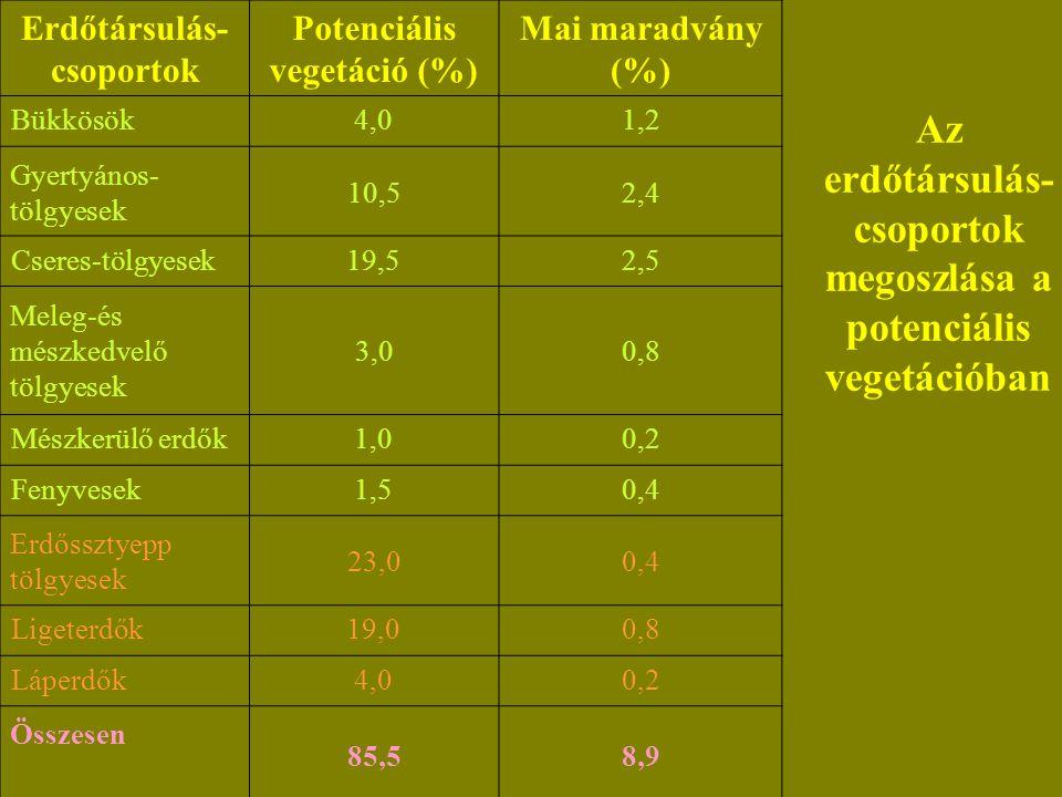 Az erdőtársulás- csoportok megoszlása a potenciális vegetációban Erdőtársulás- csoportok Potenciális vegetáció (%) Mai maradvány (%) Bükkösök4,01,2 Gyertyános- tölgyesek 10,52,4 Cseres-tölgyesek19,52,5 Meleg-és mészkedvelő tölgyesek 3,00,8 Mészkerülő erdők1,00,2 Fenyvesek1,50,4 Erdőssztyepp tölgyesek 23,00,4 Ligeterdők19,00,8 Láperdők4,00,2 Összesen 85,58,9