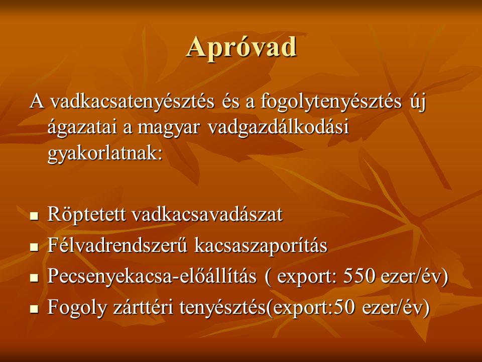 Apróvad A vadkacsatenyésztés és a fogolytenyésztés új ágazatai a magyar vadgazdálkodási gyakorlatnak: Röptetett vadkacsavadászat Röptetett vadkacsavadászat Félvadrendszerű kacsaszaporítás Félvadrendszerű kacsaszaporítás Pecsenyekacsa-előállítás ( export: 550 ezer/év) Pecsenyekacsa-előállítás ( export: 550 ezer/év) Fogoly zárttéri tenyésztés(export:50 ezer/év) Fogoly zárttéri tenyésztés(export:50 ezer/év)