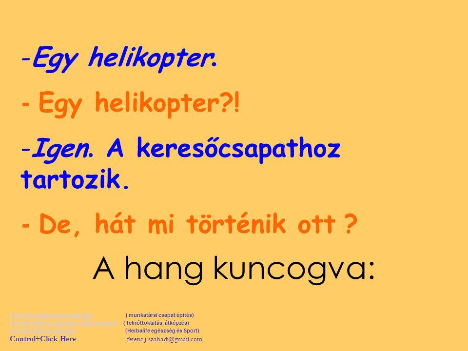-E-Egy helikopter.- Egy helikopter?. -I-Igen. A keresőcsapathoz tartozik.