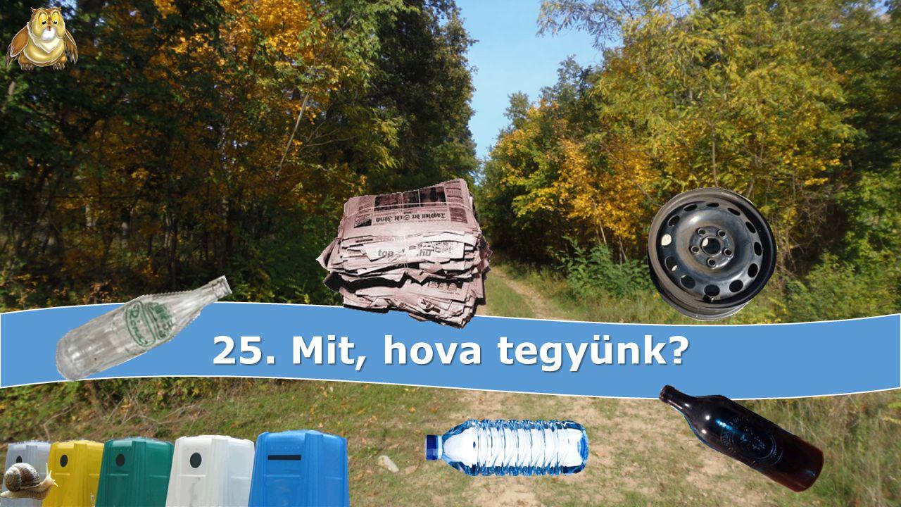 25. Mit, hova tegyünk?