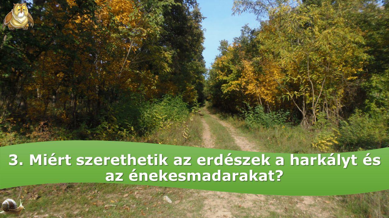 3. Miért szerethetik az erdészek a harkályt és az énekesmadarakat?