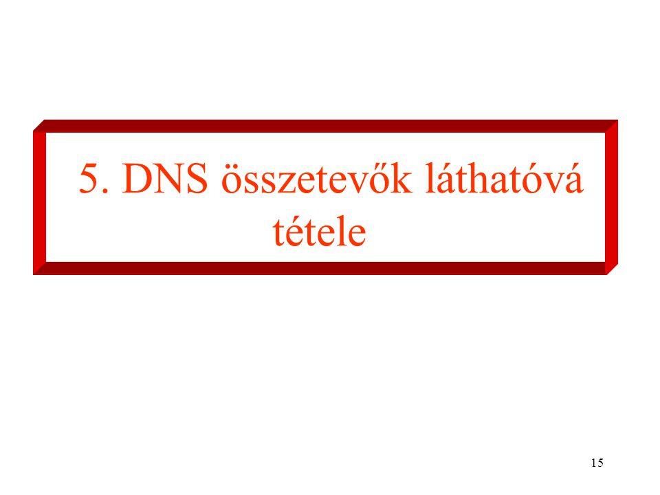 15 5. DNS összetevők láthatóvá tétele